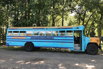 a blue bus parked in front of a forest