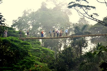 a group of people on the hanging bridges