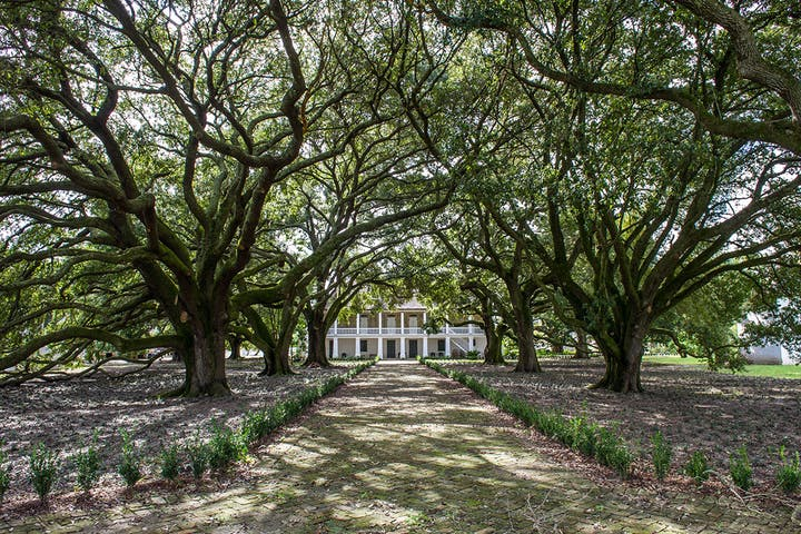 A plantation in New Orleans.