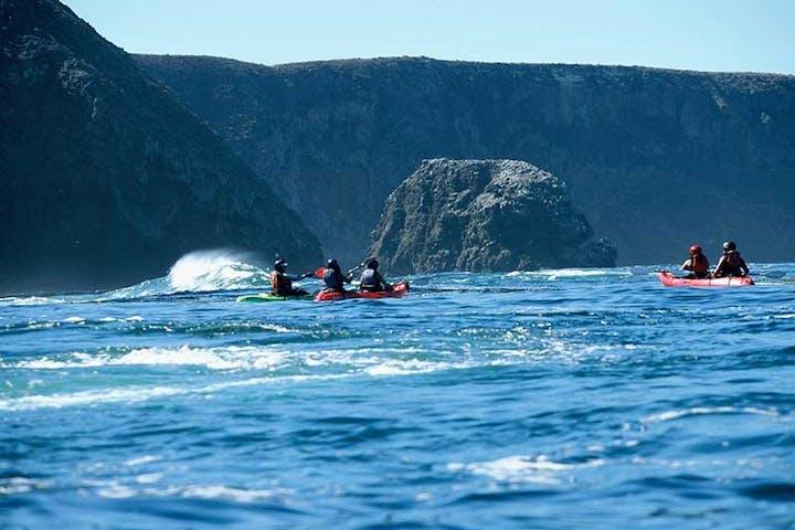Kayaking in Palos Verdes Peninsula