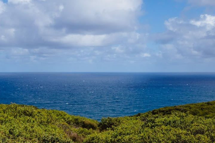 Things to do in Rancho Palos Verdes