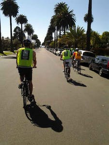 Cyclists on palm tree road
