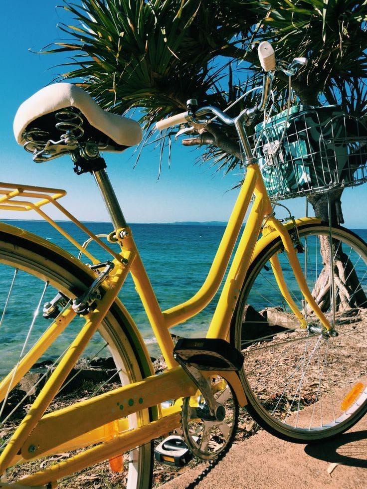 yellow beach bike cruiser by a palm tree rent a bike with bikes and hikes la
