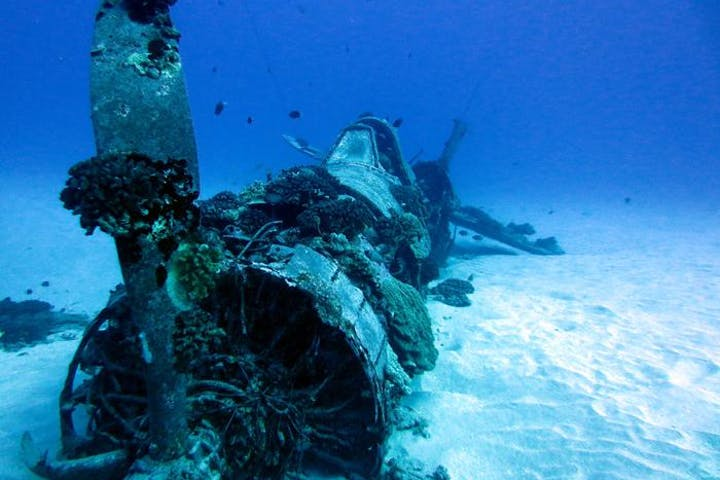 WWII Corsair Fighter wreck on Oahu, Hawaii