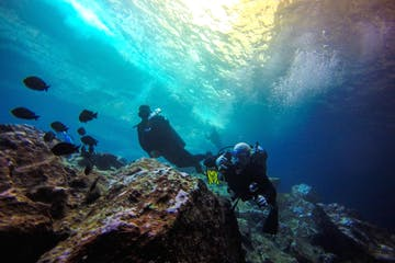 Scuba divers underwater on Oahu, Hawaii