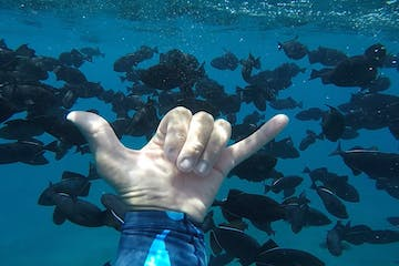 Scuba diver making 'hang loose' sign underwater on Oahu, Hawaii