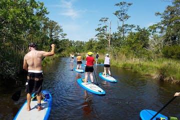group of people paddleboarding down lake