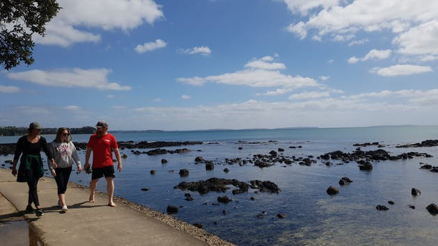 Auckland Bush Beach Tours