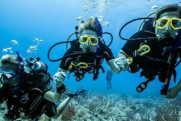 3 people holding hands scuba diving