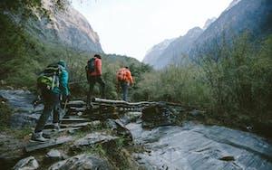 three hikers cross a log bridge over a river