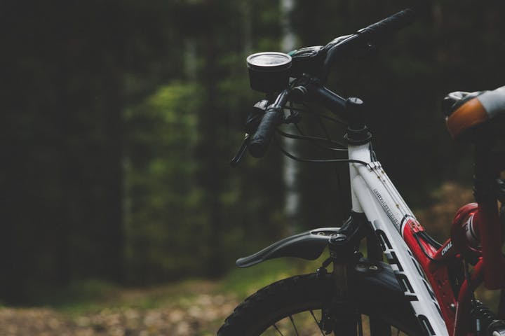 Mountain bike near forest