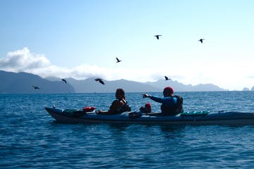 kayaker pointing with with birds in the background