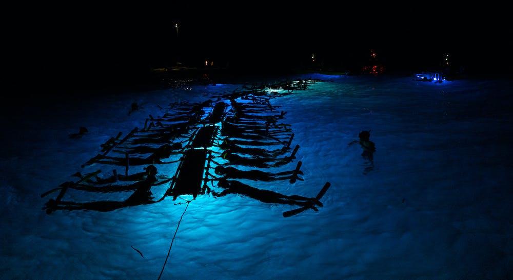 evening manta snorkel tour