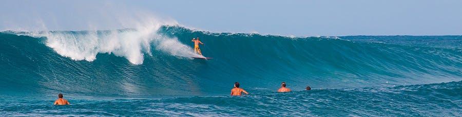 North Shore Surfing Crowd