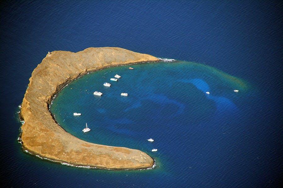 molokini snorkeling site