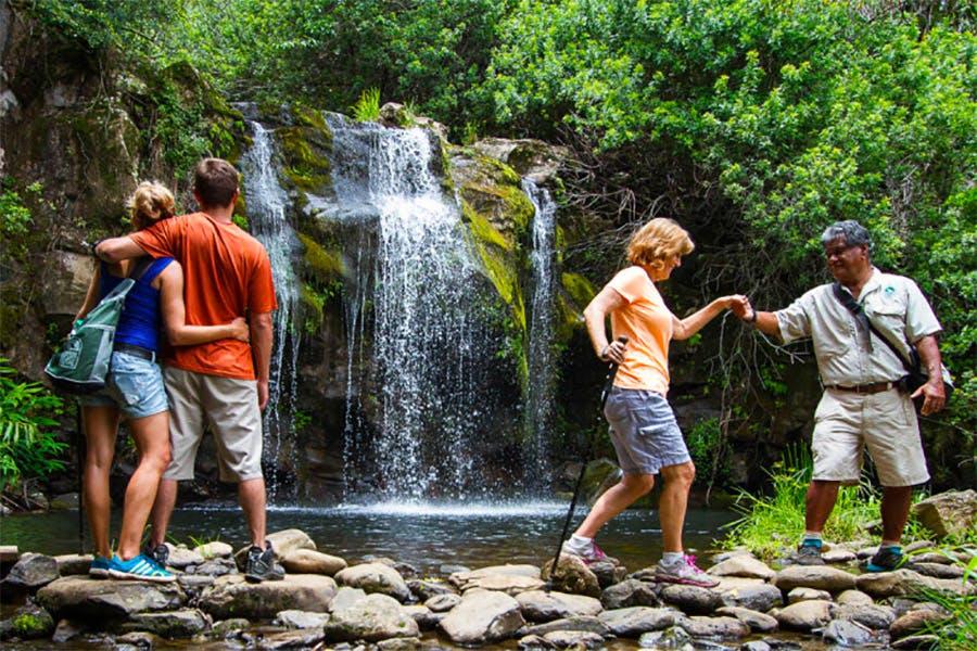 big island eco tours