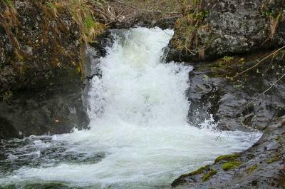 A small waterfall in Alaska