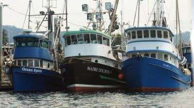 Three boats docked in the Hoonah Marina