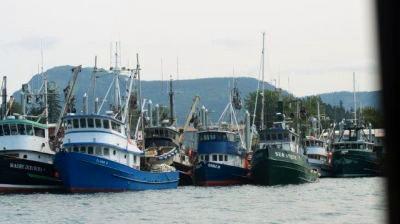 Boats in the marina in Hoonah Alaska