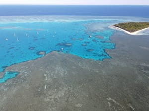 Lady Musgrave Island and reef