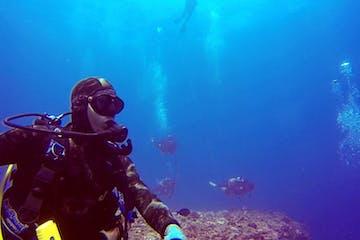 scuba diver underwater ocean fish