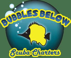 bubbles below scuba charters hawaii