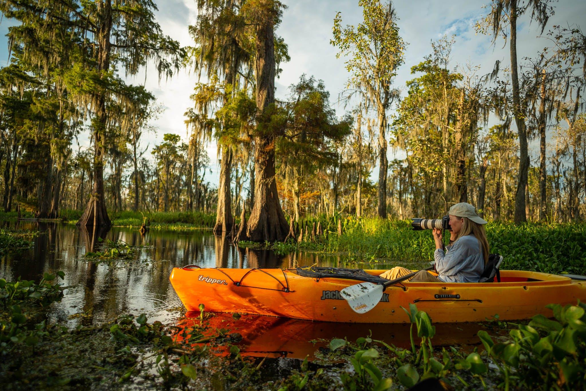 Manchac swamp photographer
