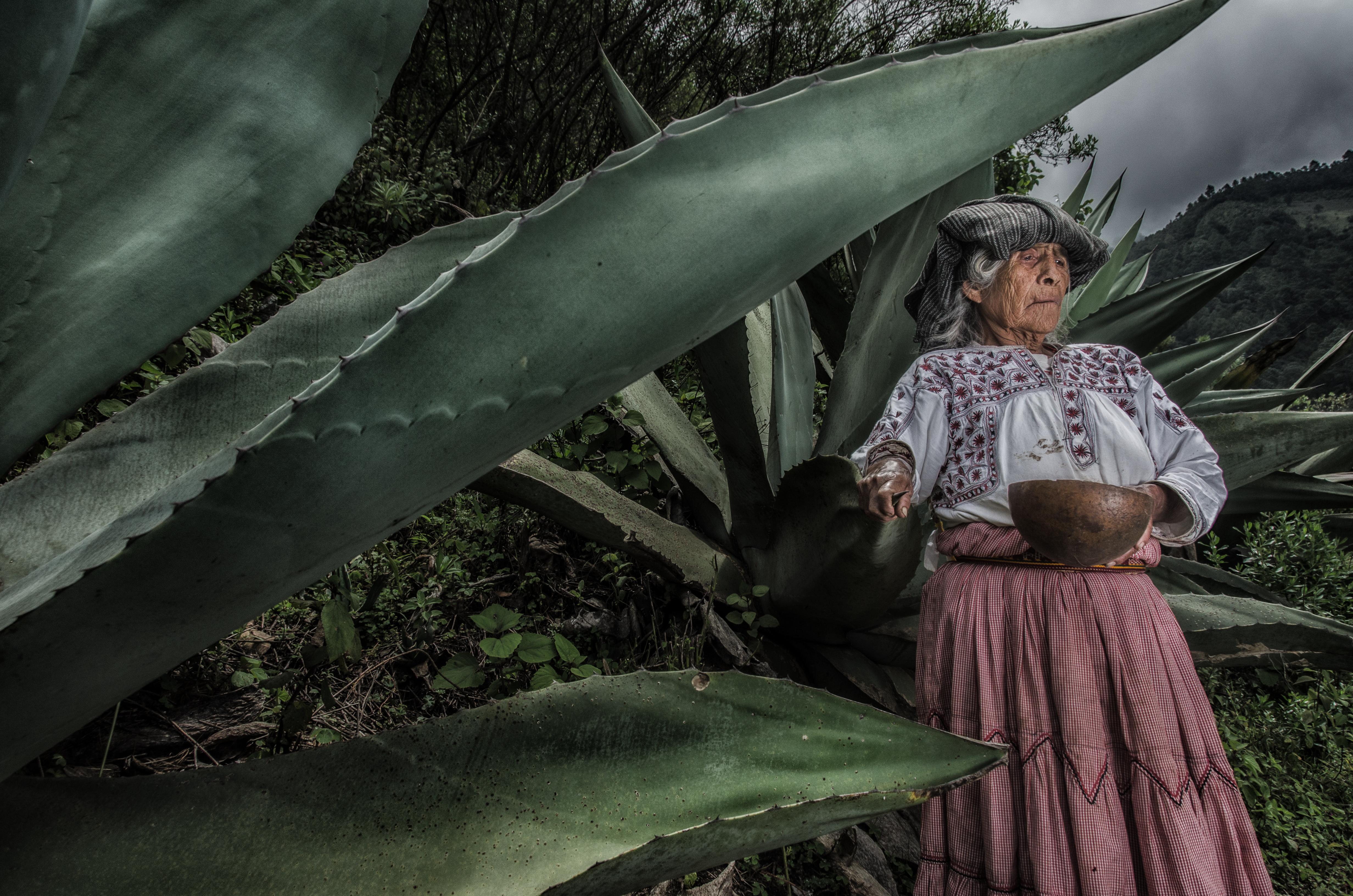 Tejas, Tlahuitoltepec