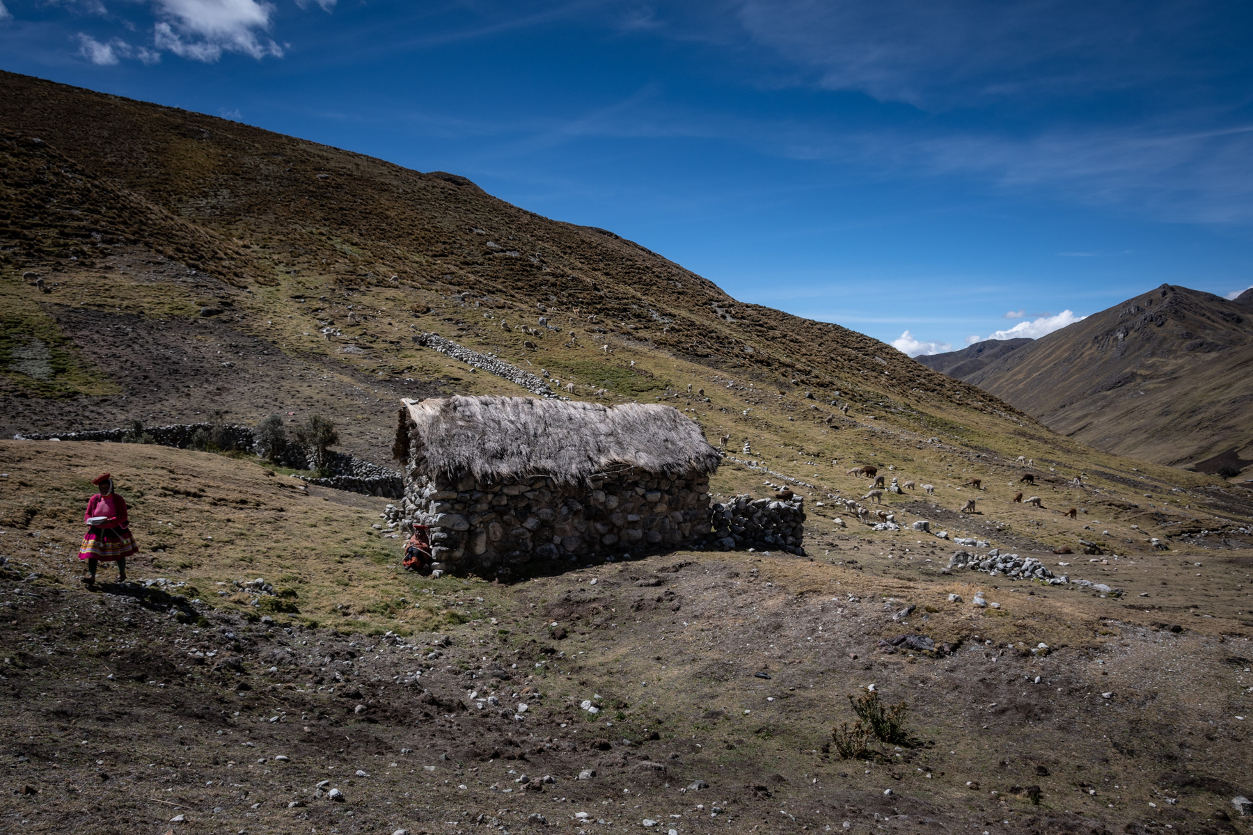 A women walks in Quechua, the high Andes of Peru