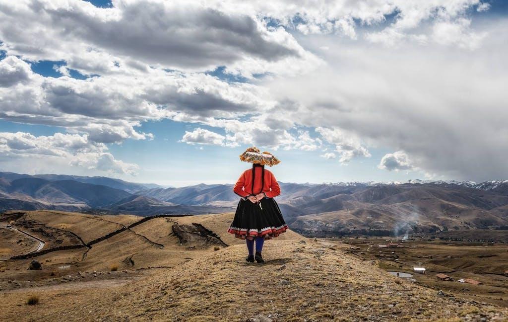 Peruvian weaver , Upis in the mountains of Peru