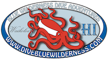 Blue Wilderness Dive Adventures Corp