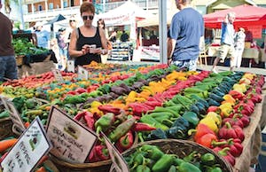An array of colorful peppers and other veggies on display at the Little Italy Mercato Farmers Market in San Diego