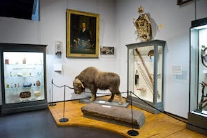 The Charleston Museum is a great idea for your next charleston SC weekend getaway