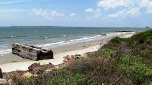 Best Beaches in Charleston - Sullivan's Island