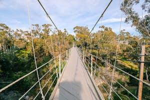 San Diego Bucket List: Visit the Spruce St. Suspension Bridge