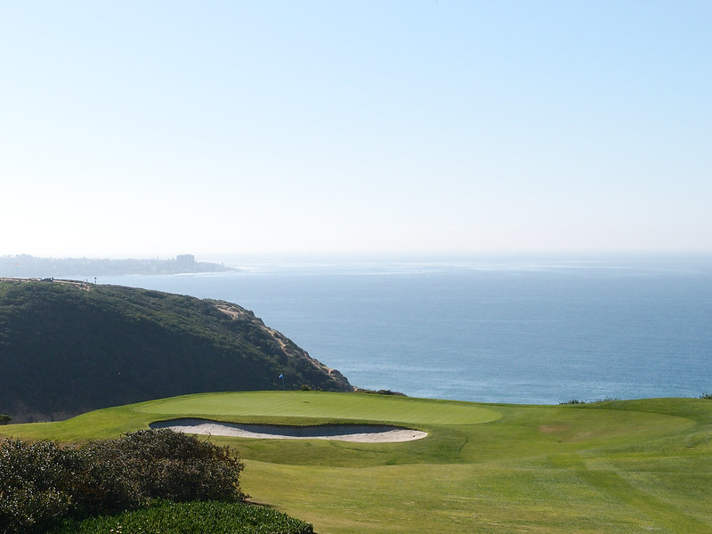a close up of a hillside next to a body of water with Torrey Pines Golf Course in the background