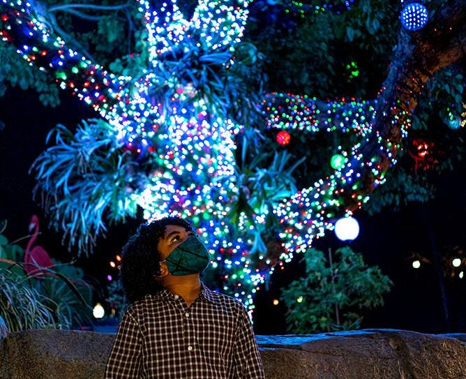 a man standing in front of a christmas tree