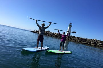 Paddle boarders raising paddles