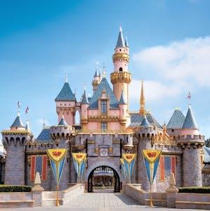 Host your team building activities at Disneyland