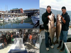 Explore San Francisco on a fishing charter
