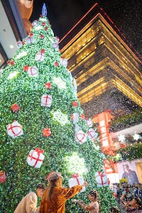 a large christmas tree in the city