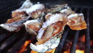 a close up of oysters cooking in their shells on the grill
