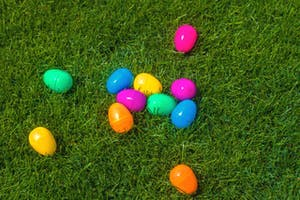 easter egg hunt on a lawn