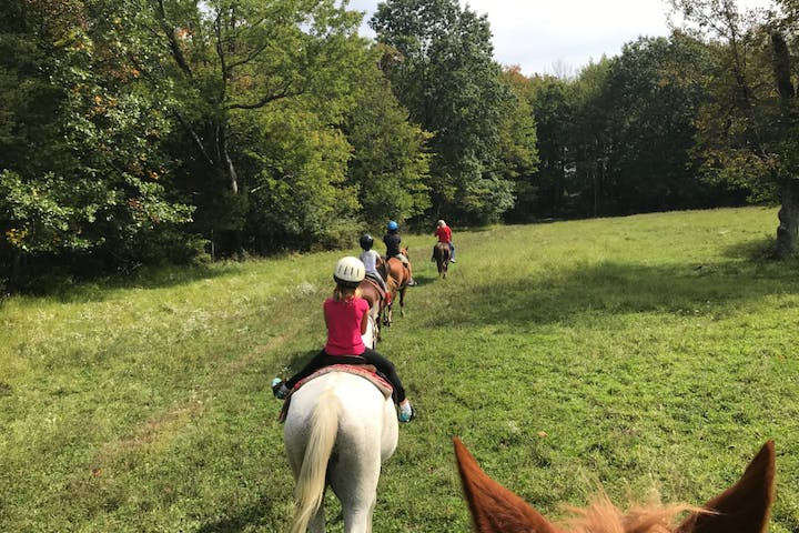Photo of trail riders riding through a field