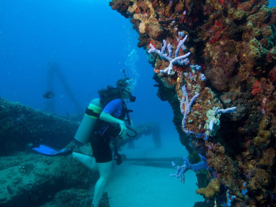 Crashboat Beach scuba diving