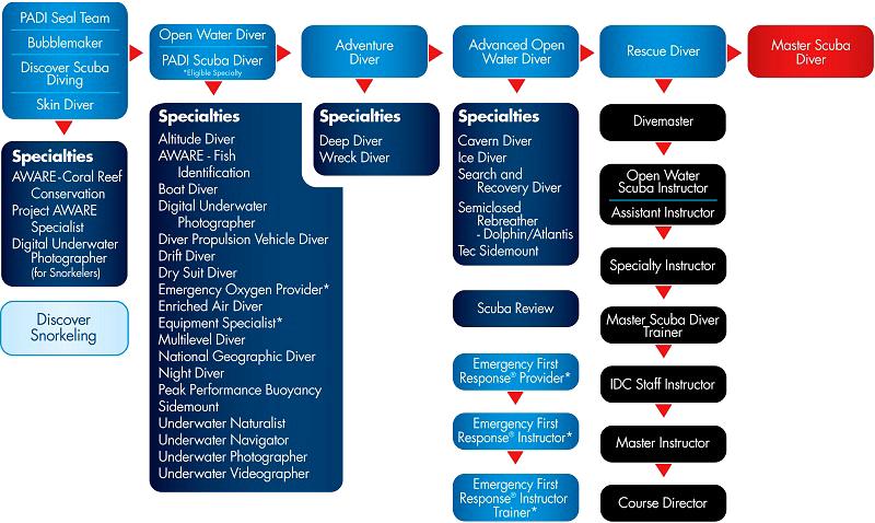 PADI Dive Certification Chart