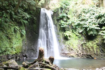sanguinho-waterfall-tour