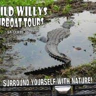A Wild Willy's postcard featuring an alligator