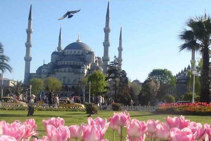 Istanbul Express Image