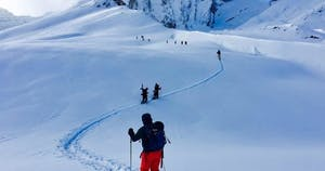 Backcountry skiers going down hill in Canada